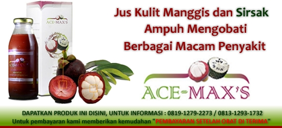 Banner-Ace-Maxs